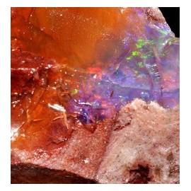 Opale de Feu*