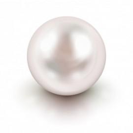 Perle*