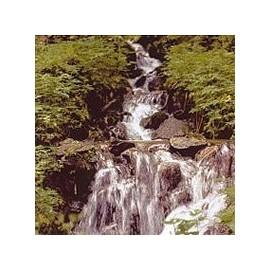 Eau de Roche/Rock Water*