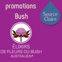 Bush promotions